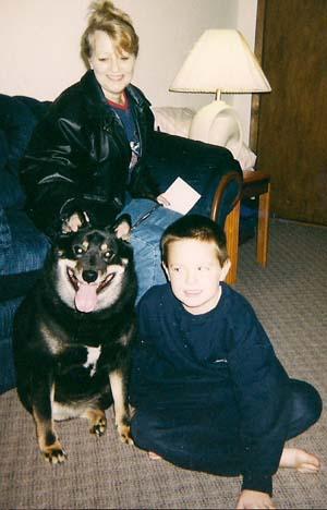 Dog: Boomer - Shiba Inu